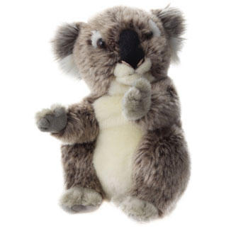 Plusz Koala 21 cm