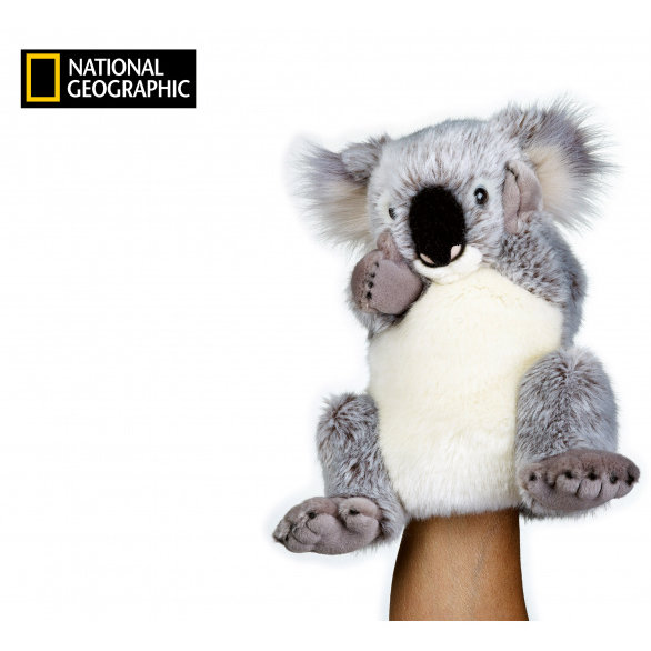 National Geographic maňuška Koala 26 cm