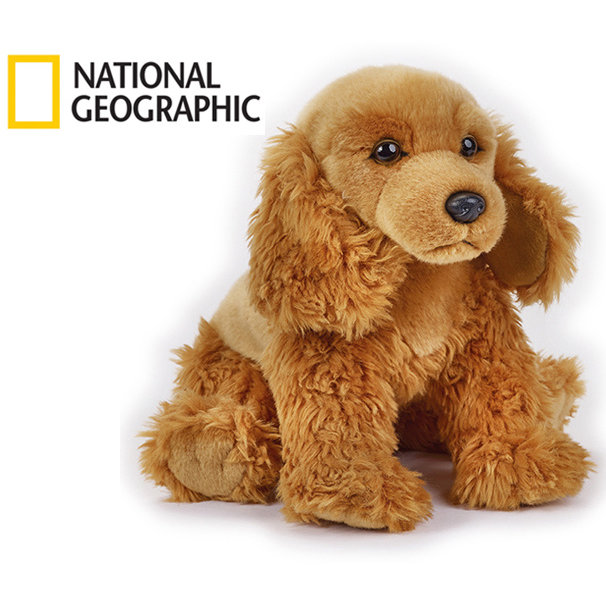 National Geographic Kids kokeršpaniel pes 33 cm