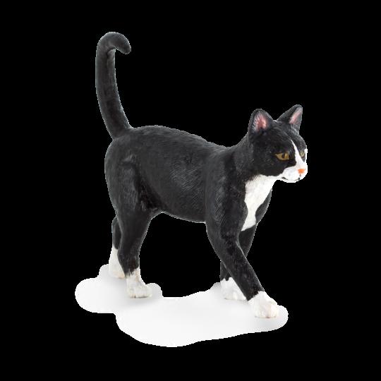 Kot domowy ANIMAL PLANET