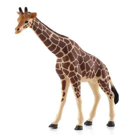 Animal Planet Žirafa