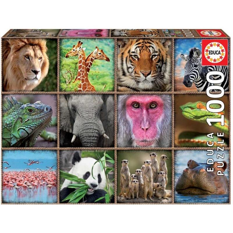 Puzzle 1000 dílků - Divočina
