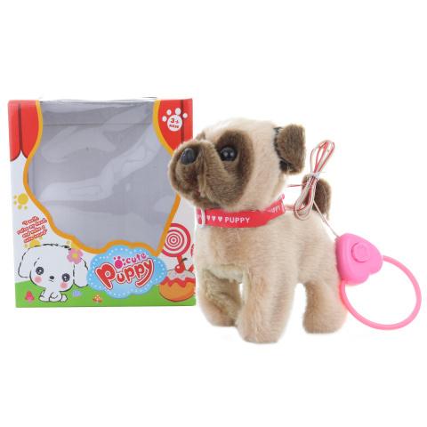 Brązowy pies na sznurku