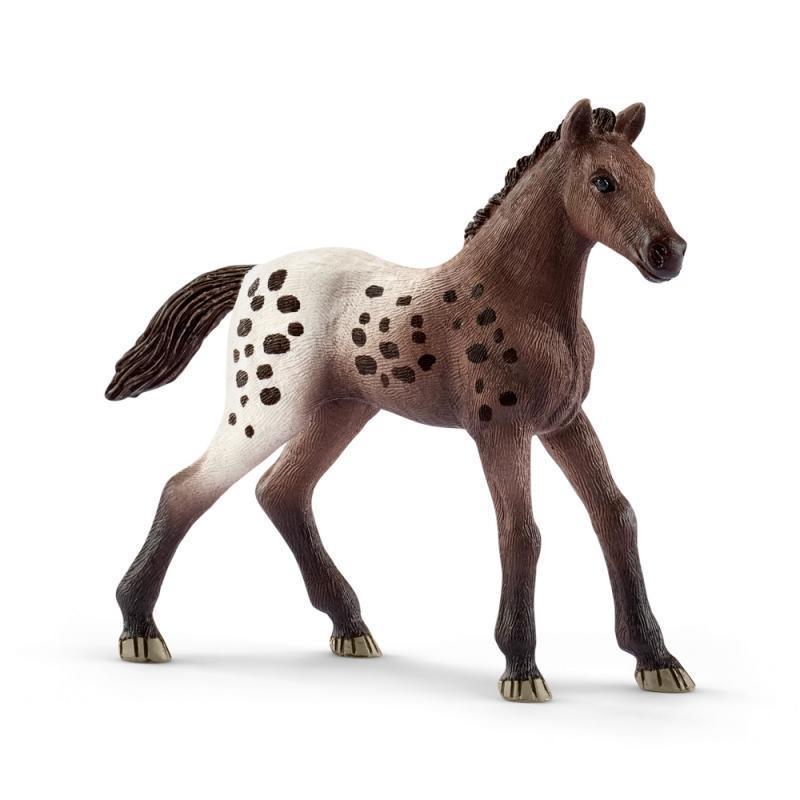 Zvířátko - appalooské hříbě