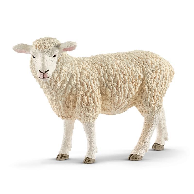 Zvířátko - Ovce
