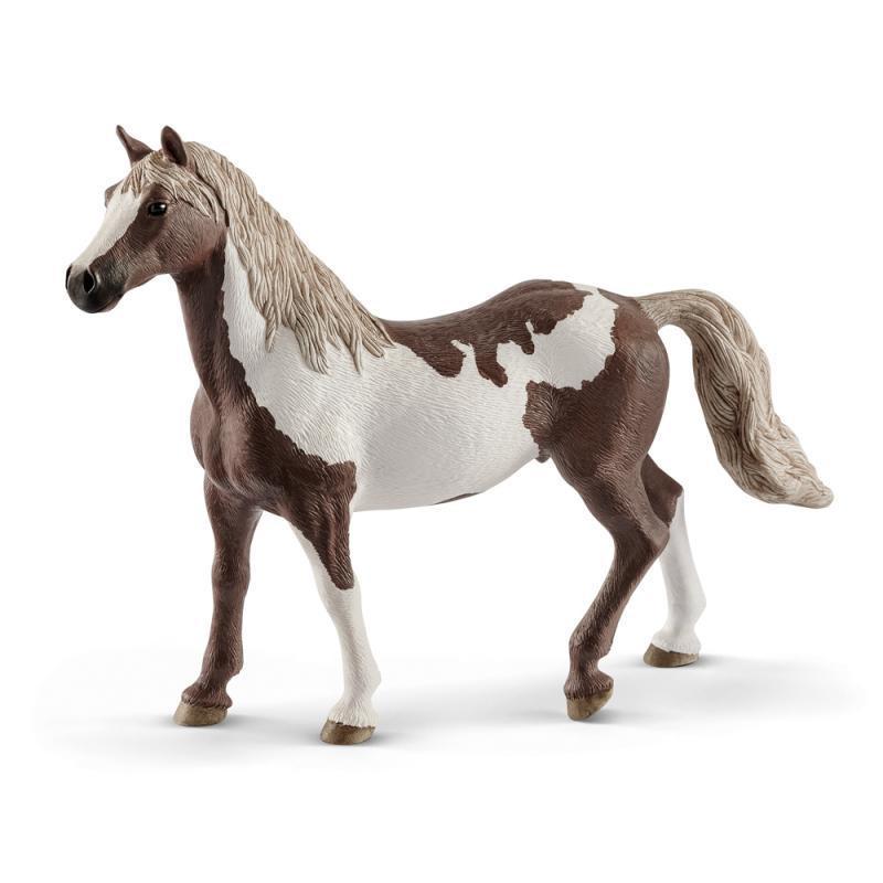 Zvieratko - Valach plemena Paint Horse