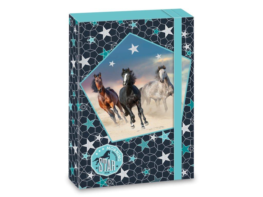Ars Una Box na zošity Morning Star A4