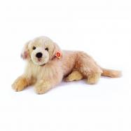 Plyšový pes retrívr 53 cm