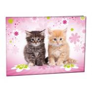Desky na číslice Cats II