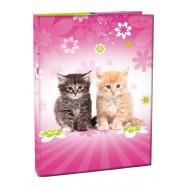 Box na sešity A4 s klopou Cats II