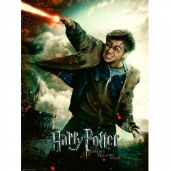 Harry Potter 100 dílků