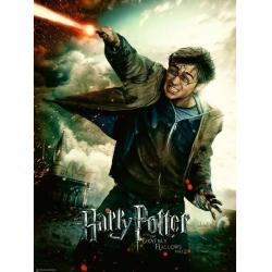 Harry Potter 100 dielikov