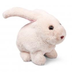 Chodzący króliczek