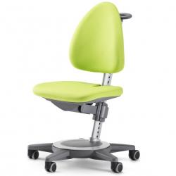 Rostoucí židle MAXIMO Grun-šedý rám