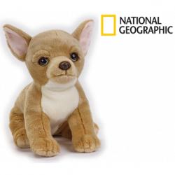 National Geographic Kids Čivava pes 33 cm