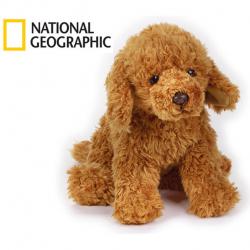 National Geographic Kids Lbradoodle pes 33 cm