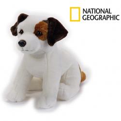 National Geographic Kids Teriér Jacka Russella pes 33 cm