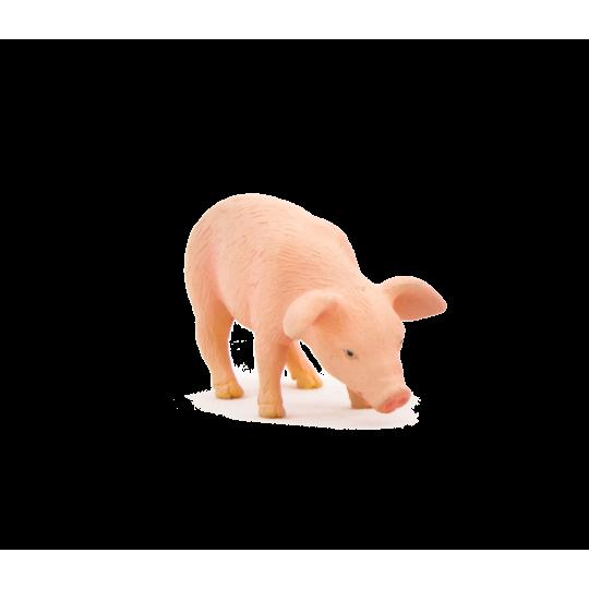 ANIMAL PLANET 7056 Prosię jedzące