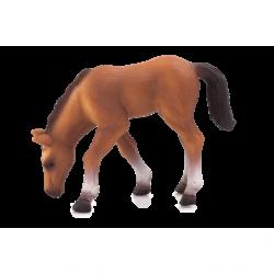 Mojo Animal Planet Kôň arabský žriebä kŕmiaci sa