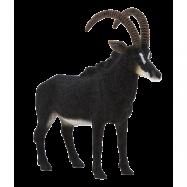 Mojo Animal Planet Antilopa vraná