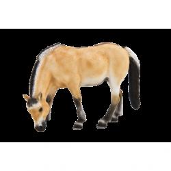 Klacz fiordzka ANIMAL PLANET