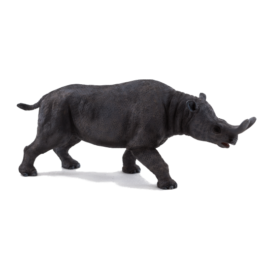 Brontotherium ANIMAL PLANET
