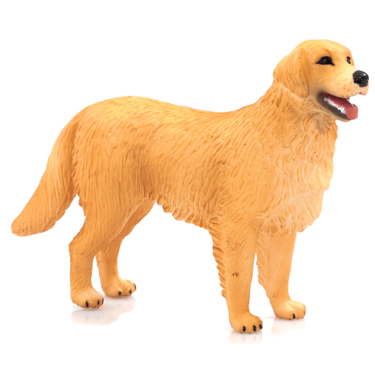 Pies rasy Golden Retriver ANIMAL PLANET