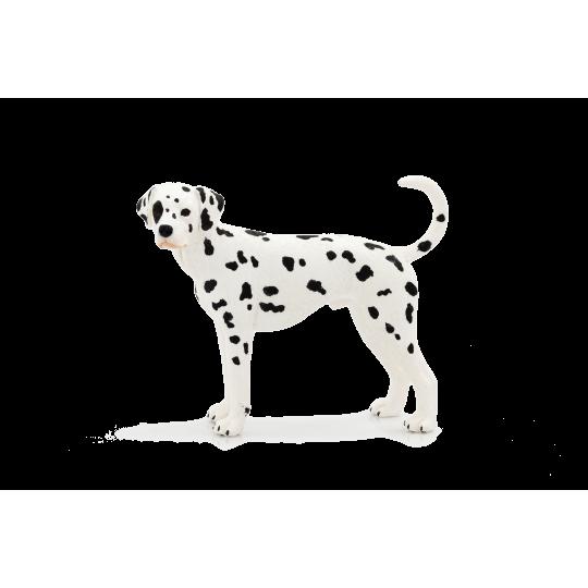 Mojo Animal Planet Dalmatin
