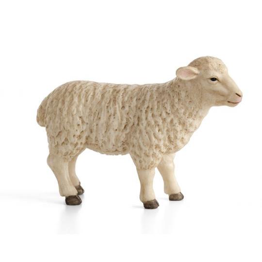 Owca ANIMAL PLANET