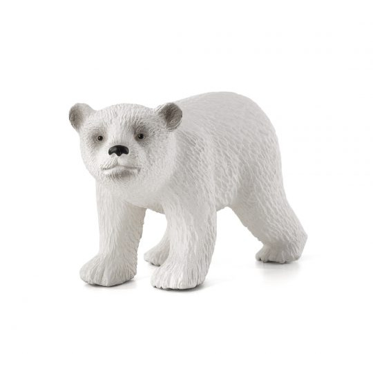 Młody niedźwiedź polarny stojący animal planet