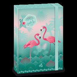 Teczki na zeszyty Flamingo A4