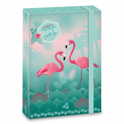 Box na zošity Pink Flamingo A5