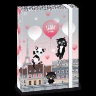 Ars Una Box na zošity Think Pink 20 A4