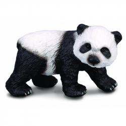 Panda velká - mládě