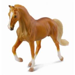 Tennessee Walking Horse hřebec zlaťák
