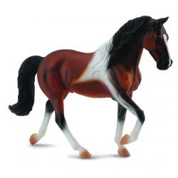 Tennessee Walking Horse hřebec hnědák