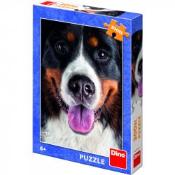 Puzzle 300 xl Chlupatý pes