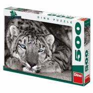 Modrooký tygr 500D