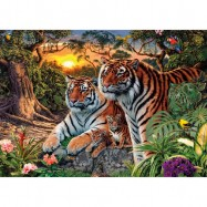 Tygři  1000D secret collection