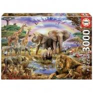 Puzzle 3000 dílků - Duha nad oázou