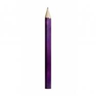 Fauna Velká tužka fialová