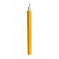 Fauna Velká tužka žlutá