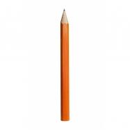 Fauna Velká tužka oranžová