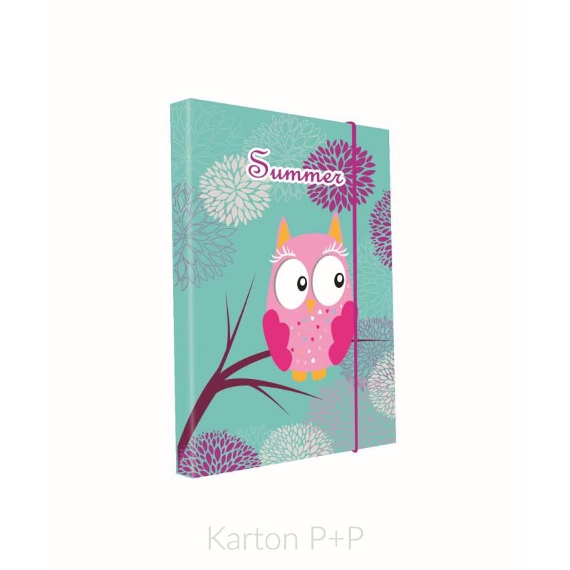 Heft box A4 Sova 3-79417