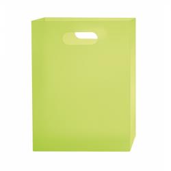 Box na sešity A4 PP Opaline Frosty zelená