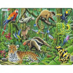 Puzzle Dažďový prales Južnej Ameriky 70 dielikov