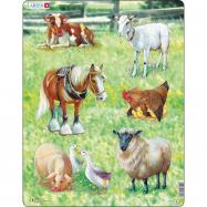 Puzzle Domácí zvířata 34 dílků