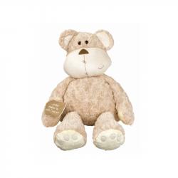 Medved Chlupáč