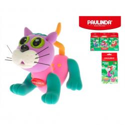 Paulinda Sweet cat 28g+8g s doplňky 6druhů v krabičce 12ks v DBX