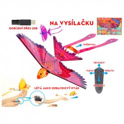 Latający ptak na radio 18 cm w WBX